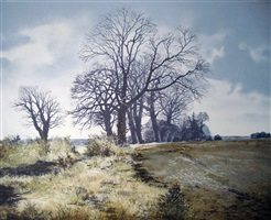chittern grove by gerald hughes