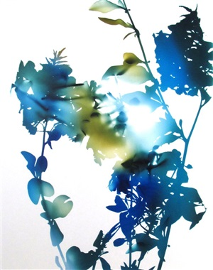 """10b (from """"flowers"""") by james welling"""
