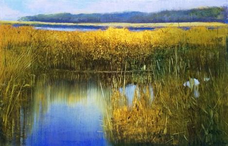 marsh and sunlight (sold) by david allen dunlop