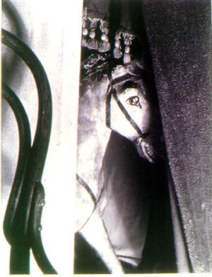 caballo de modera (wooden horse) (24688) by manuel alvarez bravo