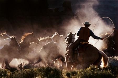 cowboy 30 by hannes schmid