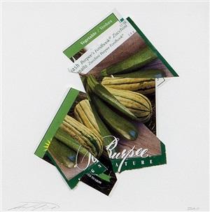 zucchini squash by sam van aken
