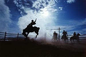 cowboy 208 by hannes schmid