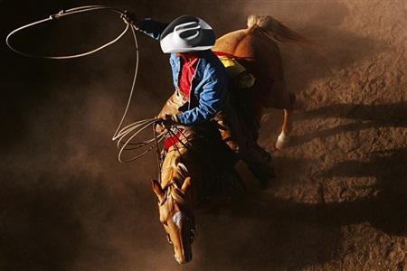 cowboy 2017 by hannes schmid