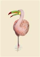 fenicano rosa by marco belfiore