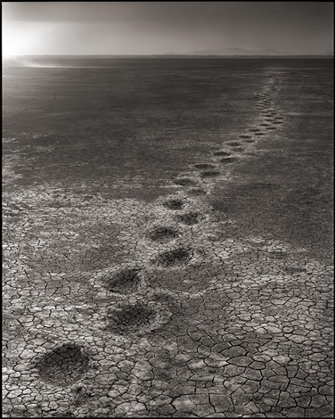 elephant footprints, amboseli by nick brandt