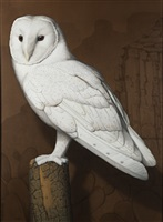 snowy barn owl by tom palmore