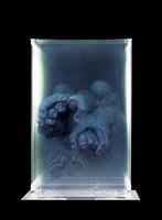 human body #17 by xia xiaowan