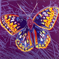 san francisco silverspot by andy warhol