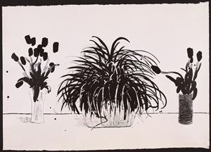 two vases of cut flowers and a liriope plant (g.915) by david hockney