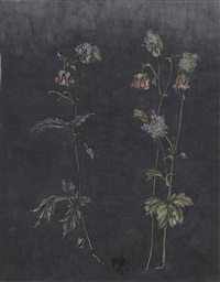 these are still flowers 1913-2013 no. 2 by yang jiechang