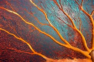 orange lightning by christopher pulitzer leidy