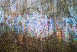 graffiti and trees by bill anderson