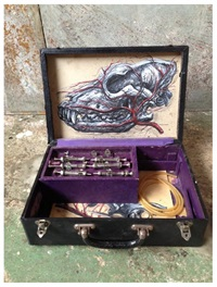 cane injection box by roa