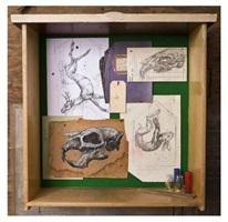 mural study box i by roa