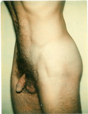 untitled (nude male) by andy warhol