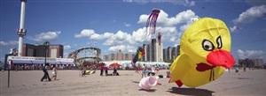 kites, coney island-brooklyn, ny usa by ron meisel