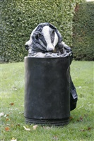 rag and bone with bin by laura ford