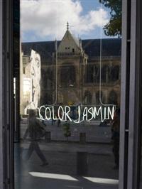 color jasmin by adel abdessemed