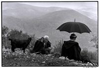 greece. crete. 1964. shepherds with goat.