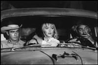 usa. hollywood, california. 1960. the misfits. marilyn monroe with dog. by erich hartmann