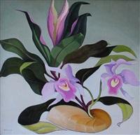 orchid tango (aka hybrids) by henrietta shore