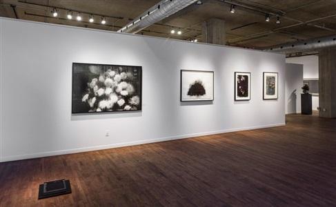 installation view of dark matter group exhibition