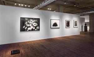 installation view of dark matter, group exhibition