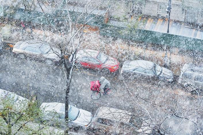 snow impressionist by mitchell funk