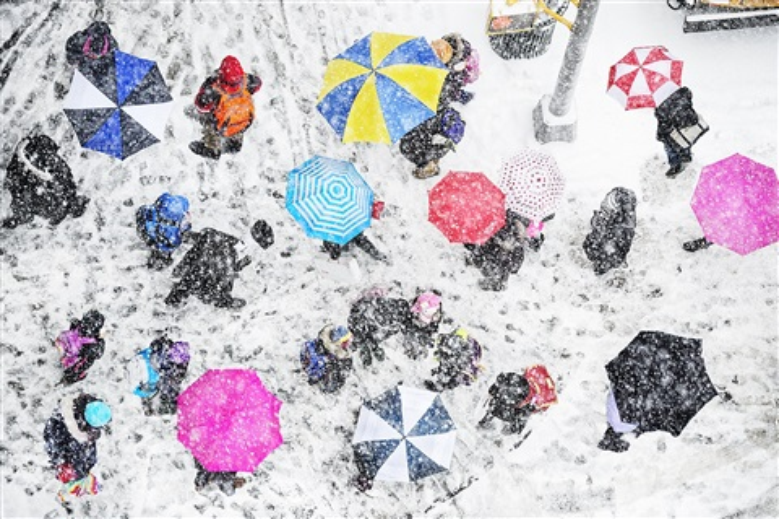 pink umbrellas by mitchell funk