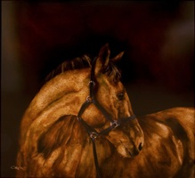 saw horse by craig alan