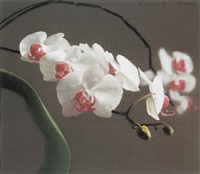 orchid iv by gerhard richter