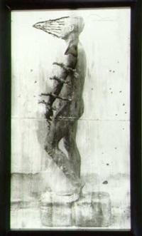 arbol geneologico (diptych with wing) (34397) by juan carlos alom