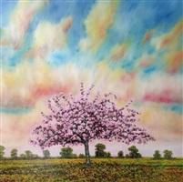 cherry blossom, dawn, staple canterbury by jack frame
