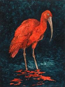 red ibis by john alexander