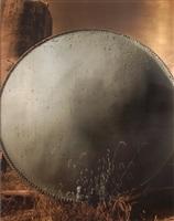 moonglow by carl goldhagen