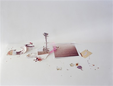 untitled 40 from the series ill form void full by laura letinsky