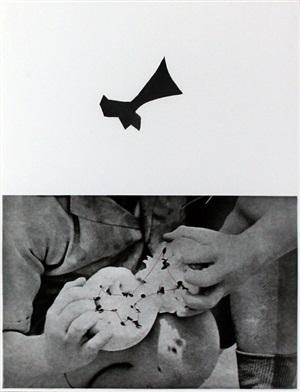 seeds by john baldessari