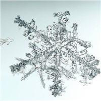 untitled (snowflake) by doug and mike starn