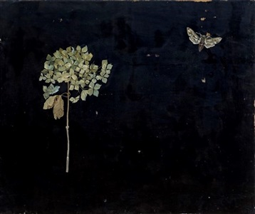hydrangea and moth by melanie miller