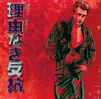 rebel without a cause (james dean) by andy warhol