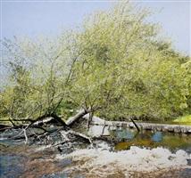 courant de la rivière by julie desmarais