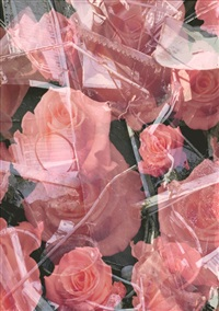 art is the better life: trash & roses by urs lüthi