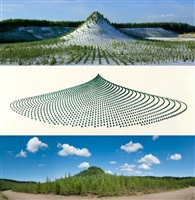 tree mountain - a living time capsule - 11,000 trees, 11,000 people, 400 years (triptych) by agnes denes