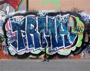 hide in paris n°07, graffiti by liu bolin