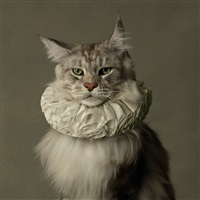 cat with white collar ii by marie cecile thijs