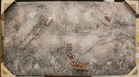 transfiguration by anselm kiefer