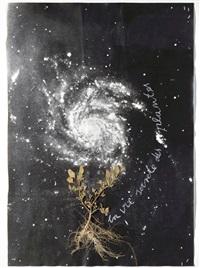 la vie secrète des plantes by anselm kiefer