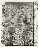 untitled by peter beard