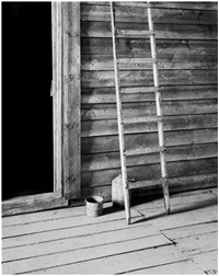 ladder (from the american series i- xii) by oskar schmidt
